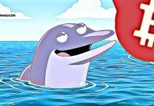 bitcoin whale veľryba