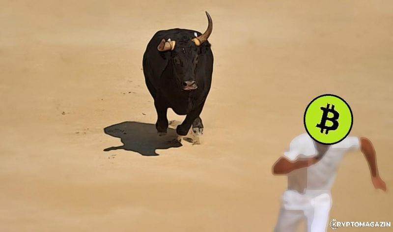 bitcoin byk bull run