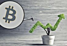 bitcoin rast up support
