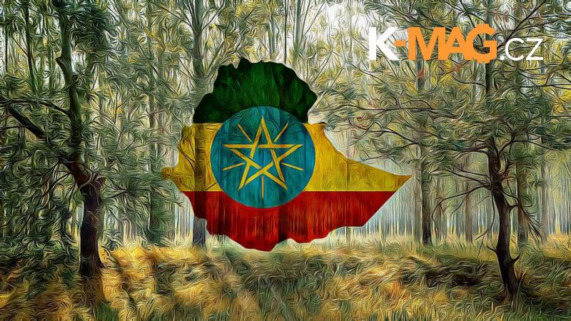 stromov, [Svetový rekord] Etiópii sa podarilo za 1 deň vysadiť 350 miliónov stromov!