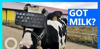 VR headset kravy