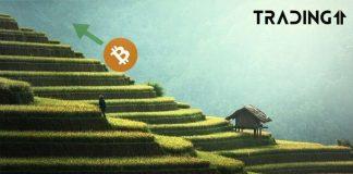 Bitcoin -btc-up