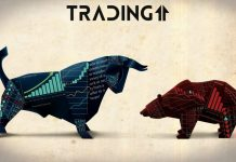 bear-bull-býk-medveď-btc-bitcoin-Singapur