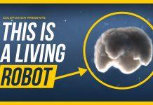 3d tlač, 3D tlač orgánov je vďaka tejto technológii ešte viac reálna!