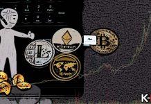 top5_profit_coinov