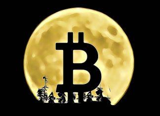 bitcoin moon obchodovanie trading predikcie.jpg