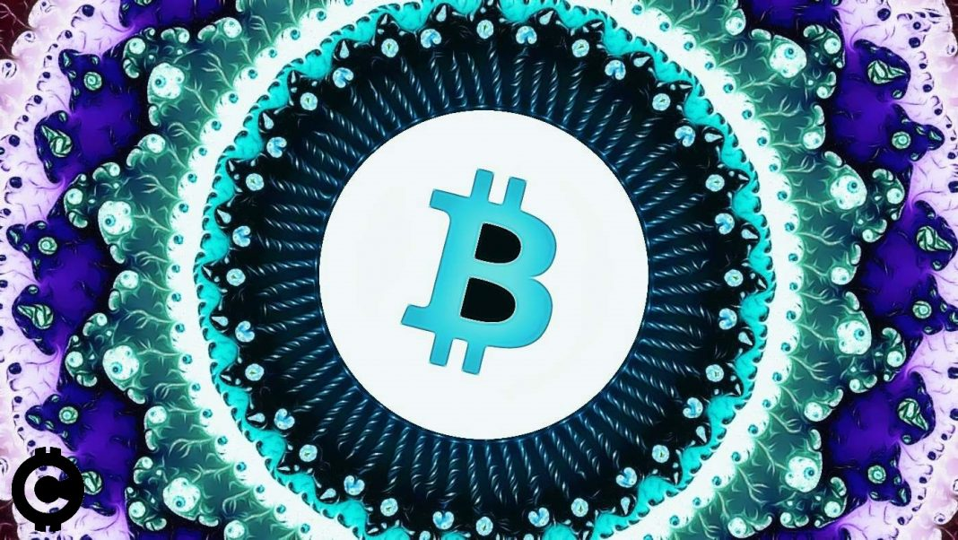 bitcoin fraktal teoria fraktalov predikcia