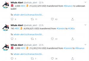 crypto whale, Whale Alert: 15855 BTC sa presunulo na anonymné peňaženky! Čo plánujú veľryby?