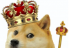 doge coin its good to be king