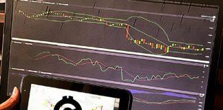 obchodovanie graf burza