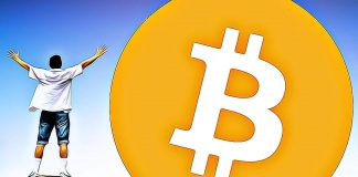 bitcoin standard vitaz fed dolar kryty