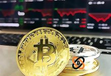 btc, SPRÁVY – Ak by každý Američan nakúpil BTC, obchodoval by sa za 24 000 USD – Veľký úspech burzy Bitfinex