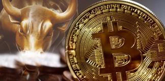 bitcoin prieskum