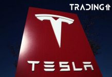 tesla logo akcie trading ekonomika obchodování
