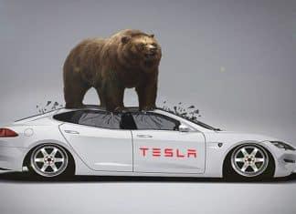 Tesla bear market