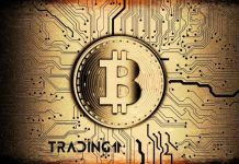 bitcoin analýza trading11 btc kryptoměny