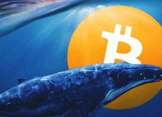 BTC veľryby