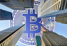bitcoin institucionalni investori