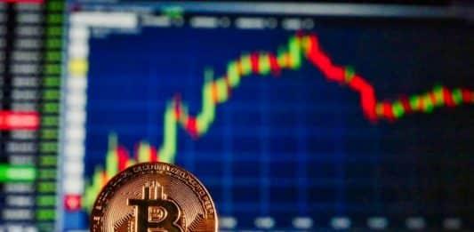 Bitcoin medvede a býci